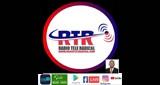 Listen online Radio Tele Radical