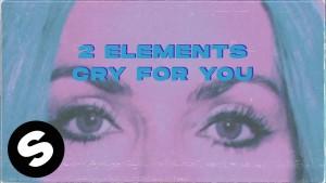 2Elements's Avatar