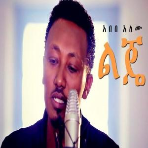 Abebe Alemu