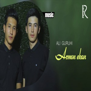 Ali Guruhi