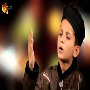 Arsalan Shah Qadri
