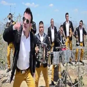 Banda Lirio