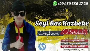 Ceyhun Berdeli