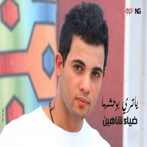 Diaa Shaheen