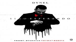 Dynel