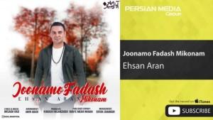 Ehsan Aran