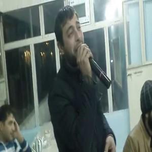 Elvin Qaradağli