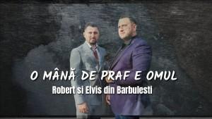 Elvis Din Barbulesti's Photo