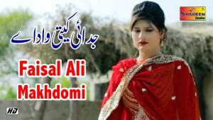 Faisal Ali Makhdomi
