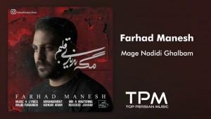 Farhad Manesh