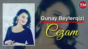 Gunay Beylerqizi's Avatar