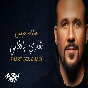 Hesham Abbas