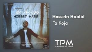 Hossein Habibi