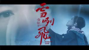 Huang Fei