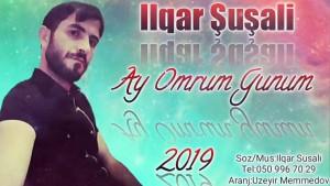 Ilqar Susali's Avatar