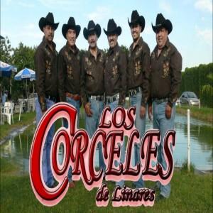 Los Corceles De Linares