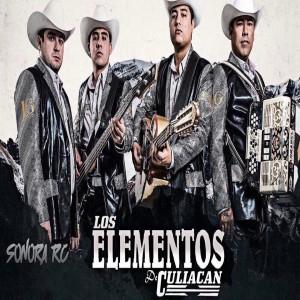 Los Elementos De Culiacán