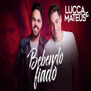 Lucca E Mateus's Avatar