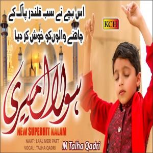 M Talha Qadri