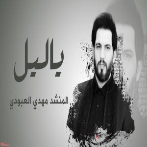 Mehdi Aboudi