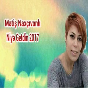 Metiş Naxçivanli
