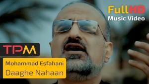 Mohammad Esfahani's Avatar