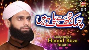 MUHAMMAD HAMID RAZA