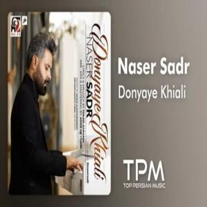 Naser Sadr