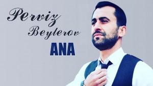Perviz Beylerov
