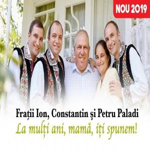 Petru Paladi