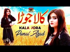 Punal Azad's Avatar