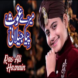 Rao Ali Hasnain