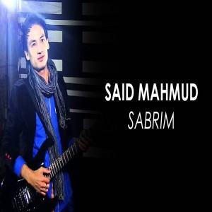 Said Mahmud