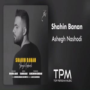 Shahin Banan