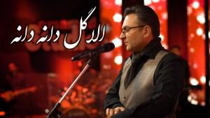 Sharif Hanif