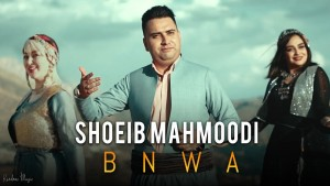 Shoeib Mahmoodi