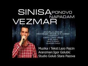 Siniša Vezmar's Avatar