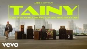 Tainy