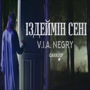 V.i.a. Negry's Avatar