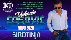 Vukašin Ćosović