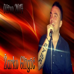 Žarko Gligić