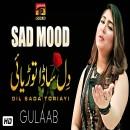Gulaab's Photo