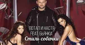 Stily Sobachki