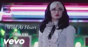 Wild At Heart (Remix)