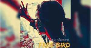 Free Bird Freestyle