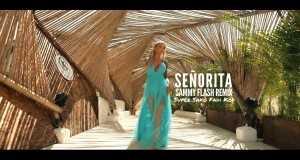 Señorita ( Remix)
