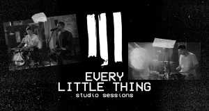 Every Little Thing  (Acoustic)