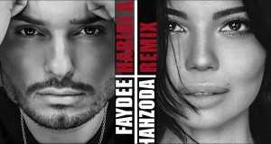Habibi Albi (Remix)