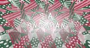 Snowman (Snowed In & Slowed Down Tiktok Remix)