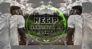 Tishinata Na Noshta
